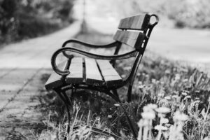 Outdoor Park Bench Black and White
