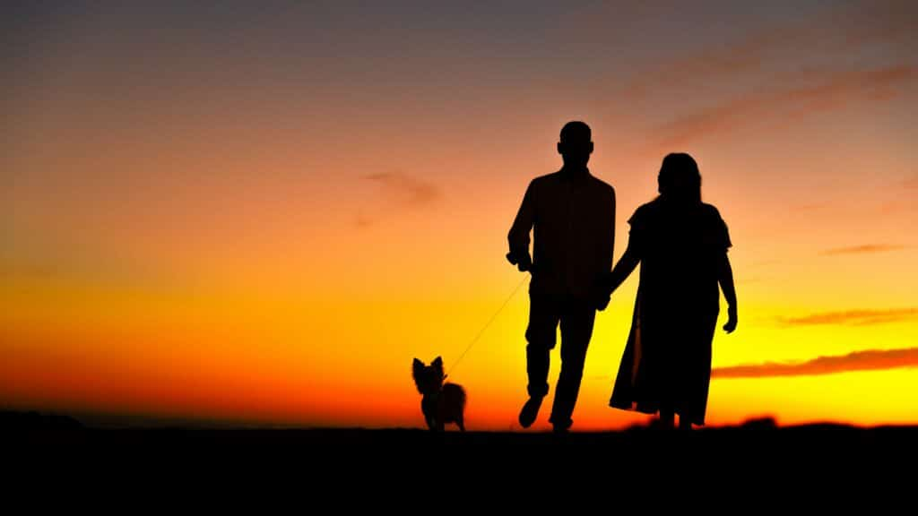 Couple Walking Dog in the Sunset Date