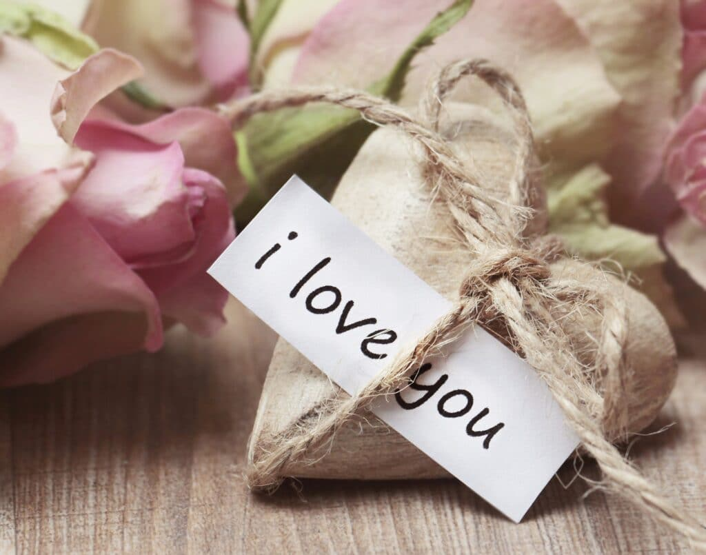 I Love You Without Saying It